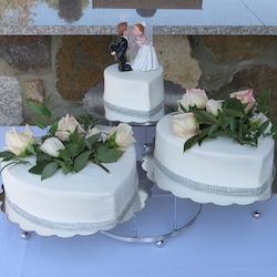 Gallery: Weddings at the Gazebo
